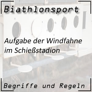 Biathlon Windfahne