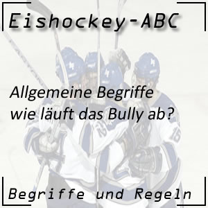 Eishockey Begriffe Bully