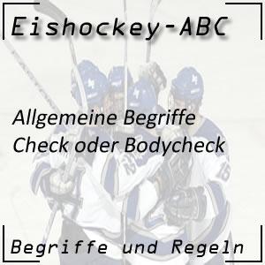 Eishockey Begriffe Check Bodycheck