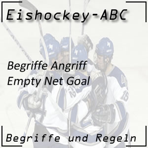 Eishockey Begriffe Empty Net Goal