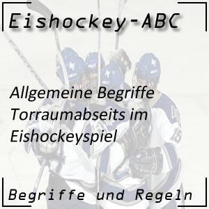 Eishockey Begriffe Torraumabseits