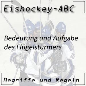 Eishockey Flügelstürmer oder Wing