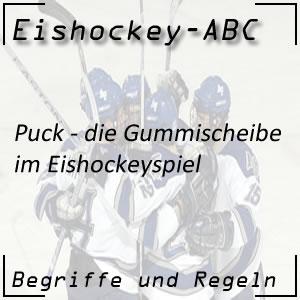 Eishockey Puck