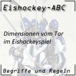Eishockey Tor Dimensionen