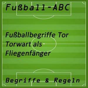 Fußball Fliegenfänger