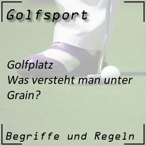 Golf Golfplatz Grain