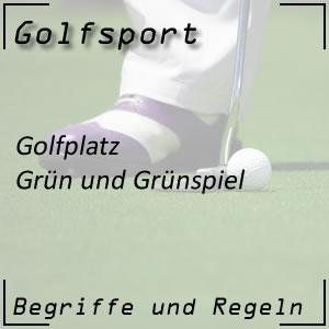 Golf Golfplatz Grün
