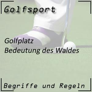 Golf Wald