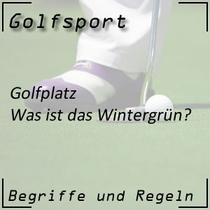 Golf Wintergrün
