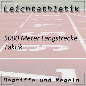 Leichtathletik 5000 Meter Taktik