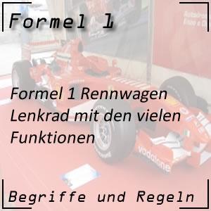 Formel 1 Lenkrad