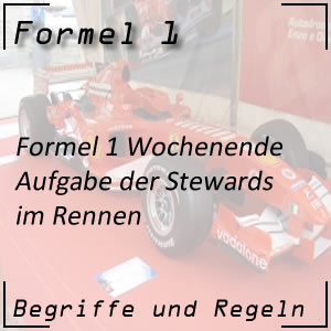 Formel 1 Stewards