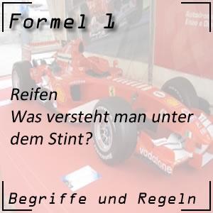 Formel 1 Stint