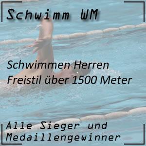 Schwimm WM Freistil 1500 m Männer