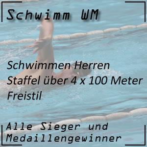 Schwimm WM Staffel Freistil 4x100 m Männer