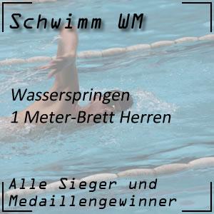 Wasserspringen 1 m Männer