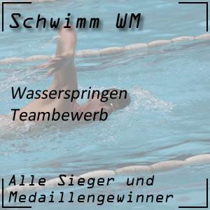 Wasserspringen Teambewerb