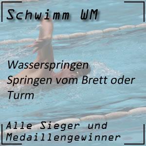 Schwimm WM Wasserspringen