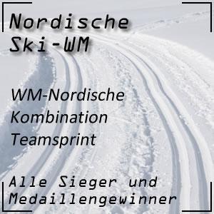 Nordische Ski-WM Nordische Kombination Teamsprint