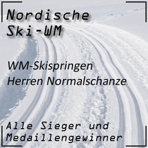 Nordische Ski-WM Skispringen Normalschanze der Herren
