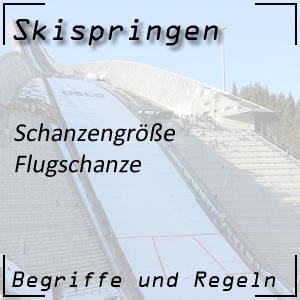 Skispringen Flugschanze