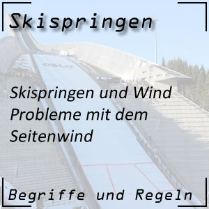 Skispringen Windnetz