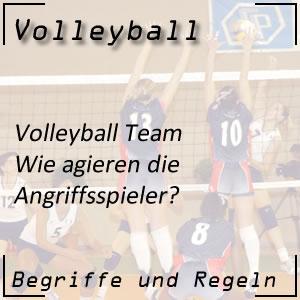Volleyball Mannschaft Angriffsspieler